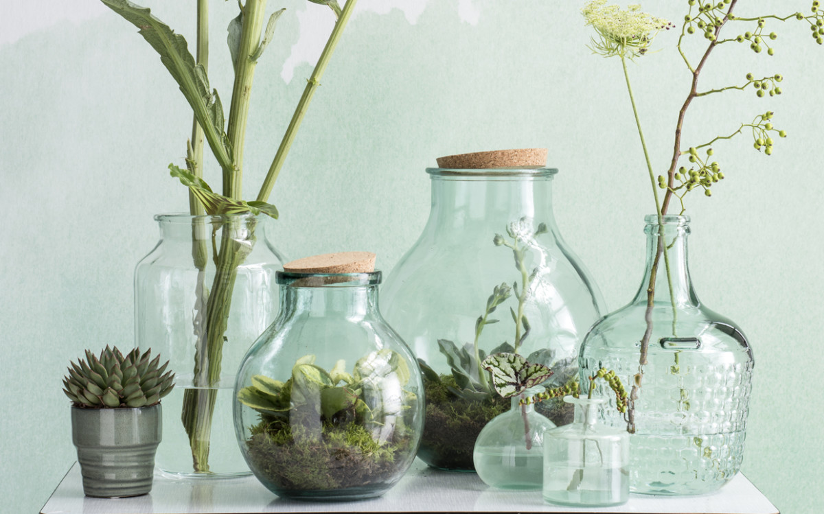 How to… make a trendy terrarium