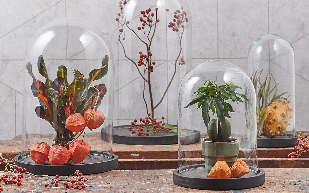 How-to decorate a bell jar