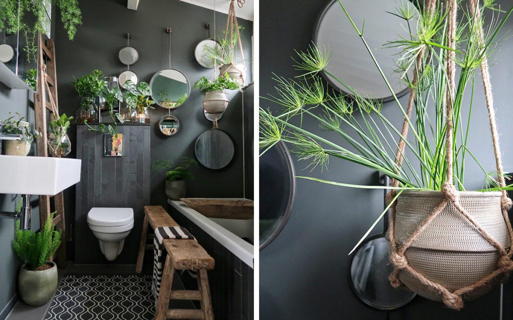 Elke plant verdient een mooi huisje