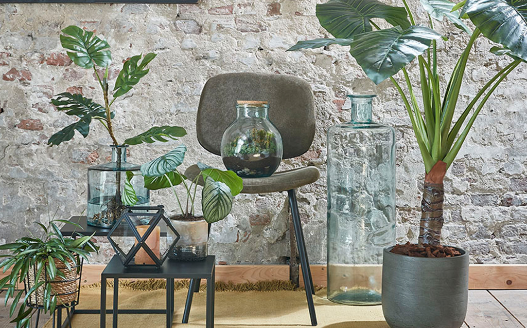 Green living for everyone (green thumb not required)