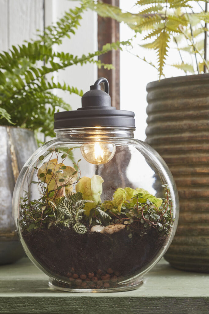 Mica Decoration Terrarium Lamp made of Glass