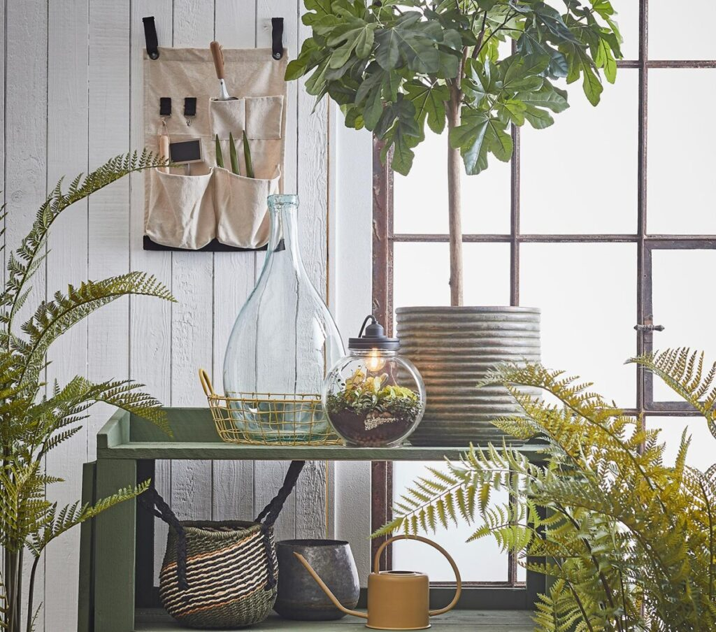 10K Give Away – Lamp Terrarium